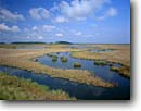 Stock photo. Caption: Tidal marsh along the Edisto River Fenwick Island ACE Basin Colleton County, South Carolina -- united deep south southern states america river rivers lowcountry swamp swamps swampy pristine estuarine estuary estuaries unspoiled ecosystem ecosystems bottomland bottomlands riparian wetlands lowland lowlands