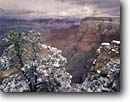 Stock photo. Caption: Pinyon pine and Grand Canyon   from Pima Point,  South Rim Grand Canyon National Park Colorado Plateau,  Arizona -- canyons parks mood moody vista spectacular dramatic united states america world heritage site sites landscape landscapes tourist vavation destination destinations travel depth breathtaking erosion timeless red rock country snow winter wintery clearing